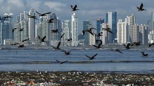 El Gobierno mostró su satisfacción por la sanción de la Ley Educación Ambiental Integral