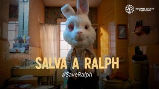 Un video con voces de famosos renovó la polémica por los cosméticos testeados en animales