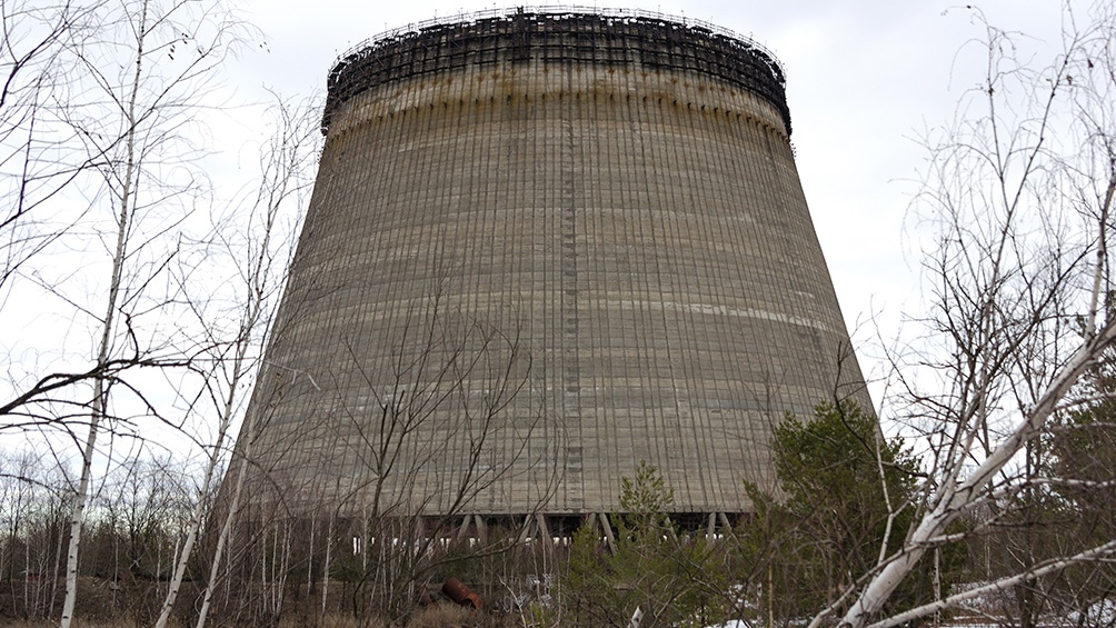 """""""Después de Chernobyl se han mejorado sustantivamente los controles de seguridad en las plantas nucleares"""", afirma Carolina Zaccato."""