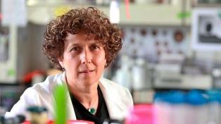La viróloga argentina Gamarnik se incorporó a la Academia Estadounidense de las Artes y las Ciencias