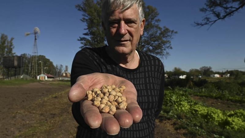SemillAR, un programa para rescatar las semillas nativas para la producción