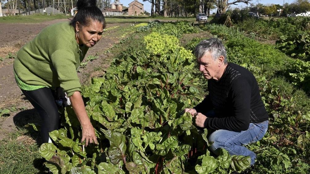 La Ley de Agricultura Familiar dispone la creación de un Banco de Tierras para la agricultura familiar.