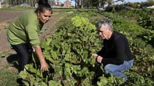 Reafirman la necesidad de la prórroga de la ley que suspende los desalojos de familias productoras