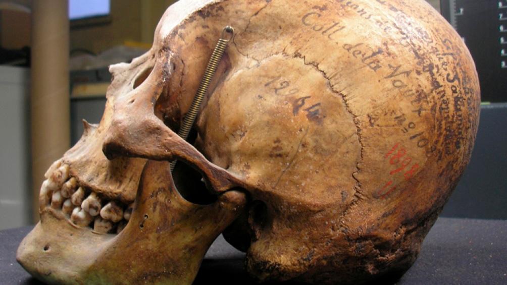 Expectativa del pueblo tehuelche por la restitución del esqueleto que estaba en París