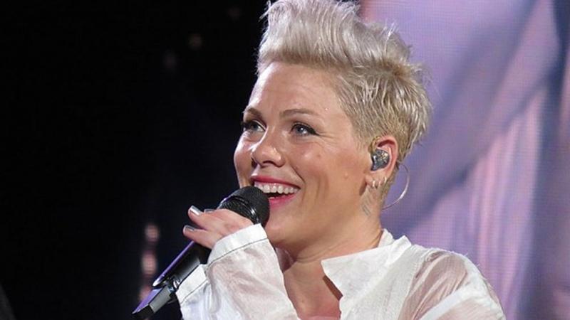 Pink recibirá una distinción especial por su carrera en los Premios Billboard