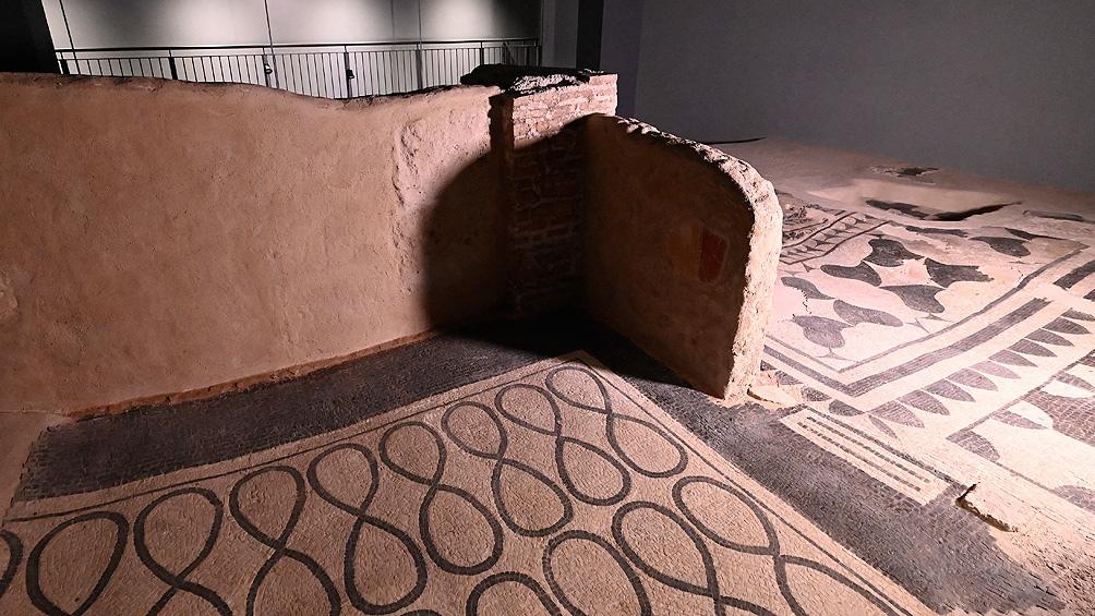 Francia devolverá los restos de un tehuelche que estaban en el Museo del Hombre de París