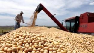 El precio de la soja retrocedió US$32 en Chicago y bordea los US$500 la tonelada