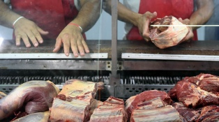 El Gobierno anuncia un plan para desarrollar el sector y bajar el precio de la carne