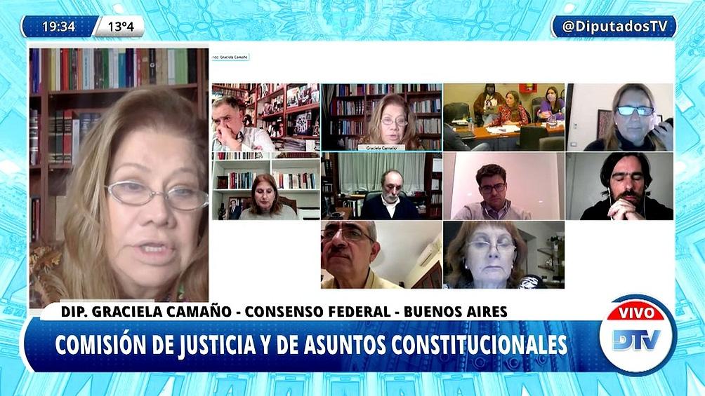 La diputada Graciela Camaño (Consenso Federal-Buenos Aires) presentó un tercer texto.
