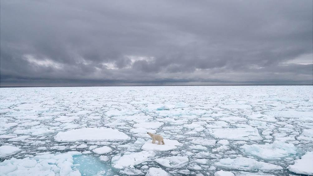 En menos de medio siglo, de 1971 a 2019, su temperatura media anual subió 3,1 °C, frente al 1 °C del planeta.