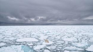 Advierten que el Ártico se calienta tres veces más rápido que el planeta