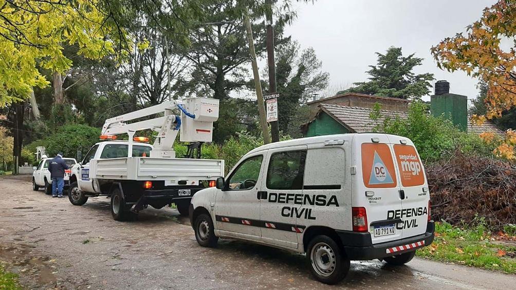 Se registraron también caídas de árboles y ramas en otros barrios, como el Bosque Peralta Ramos.