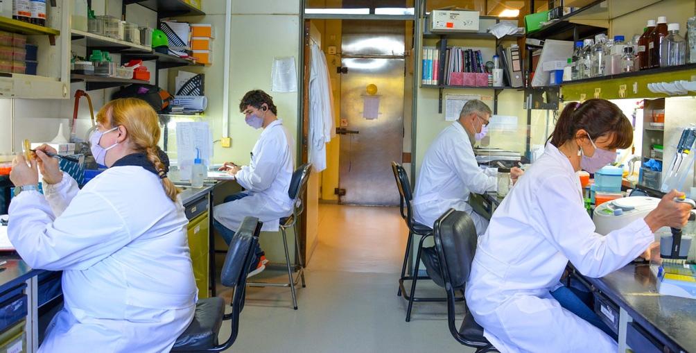 El desarrollo se realizó en el Laboratorio de Terapia Molecular y Celular (LTMC) de la Fundación Leloir.