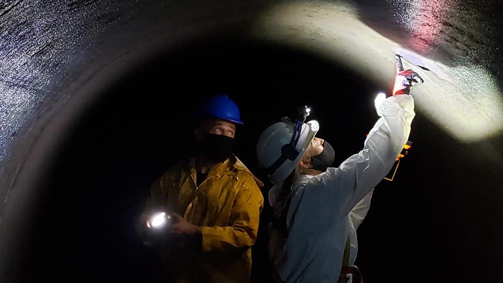 Entre los trabajos realizados, se encuentran tareas en el reactor.