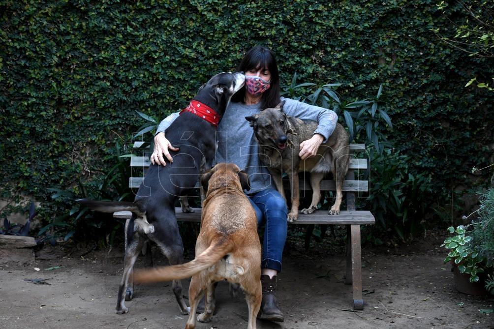 Alejandra Condoleo es integrante de la ONG Todo por Ellos. En su casa de Boulogne vive con sus cinco perros rescatados.