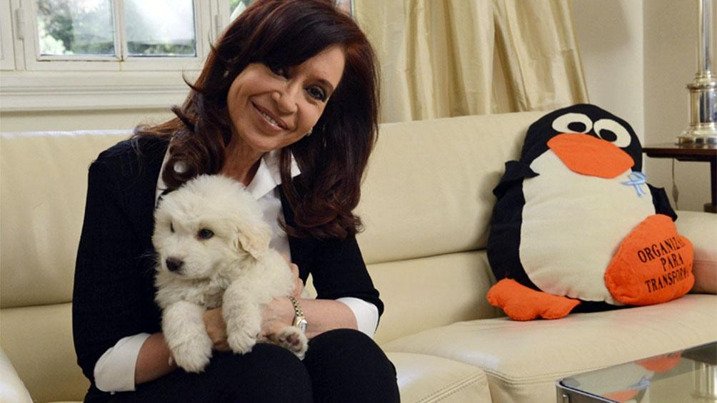 La vicepresidenta Cristina Fernández de Kirchner hace unos años con Simón, un cachorro mucuchí, la raza nacional de Venezuela.