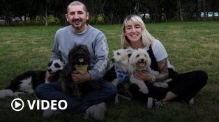 Las adopciones de perros aumentaron 200% durante la pandemia