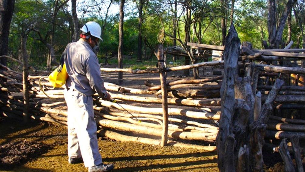 La iniciativa comenzó en 2007 con el objetivo de suprimir la infestación de las viviendas con las vinchucas Triatoma infestans