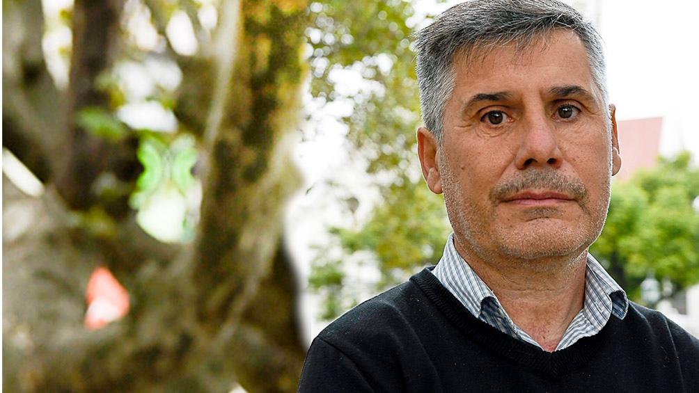 """""""Hay numerosas familias que vienen reclamando poder internar a sus hijos que sufren problemas de adicciones"""", dijo Martello."""