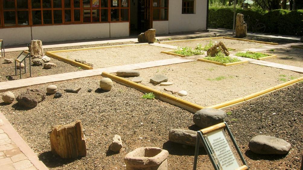 """De allí se llevaron """"objetos de poblaciones indígenas, no solo puelches y pehuenches, que habitaron la región sur de Mendoza en los últimos siglos."""