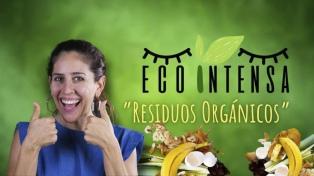 ¿Cuáles son los residuos orgánicos y qué hago con ellos?