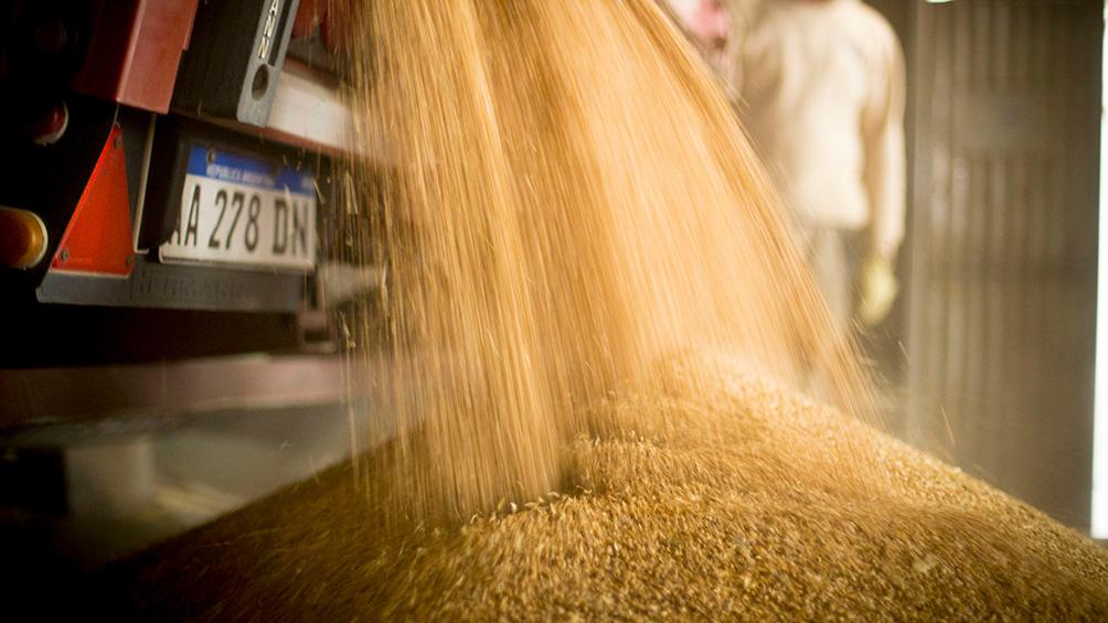 Crecieron los precios mundiales de los alimentos, luego de dos meses de caídas