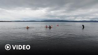 Nadadores de Tierra del Fuego recibieron el invierno sumergiéndose en el Canal Beagle