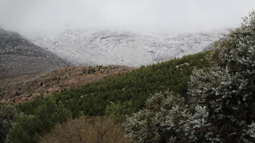 Este domingo las cumbres de la comarca de Sierra de la Ventana amanecieron cubiertas de nieve.