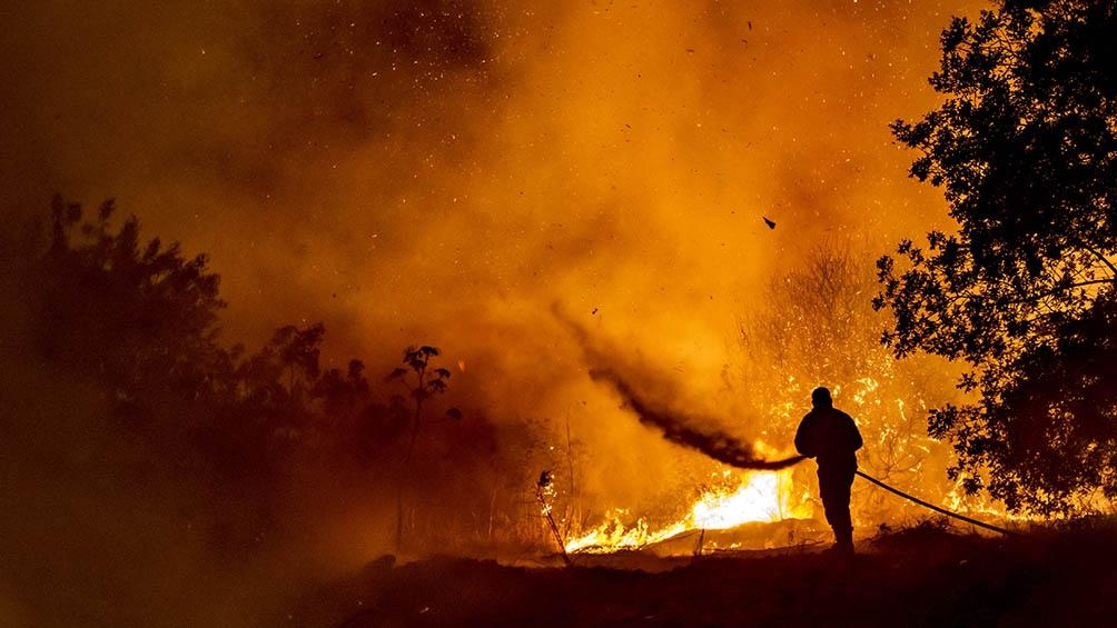 Cuatro cuerpos carbonizados fueron descubiertos cerca del pueblo de Odos