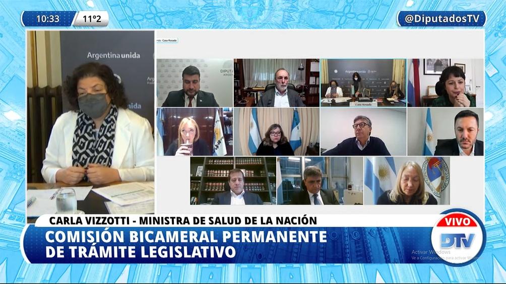 Vizzotti expuso ante la Comisión Bicameral para explicar la decisión de firmar el DNU que regula la ley de vacunas.