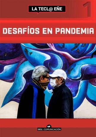 """""""Desafíos en pandemia"""", editado por Grupo Editorial del Sur."""