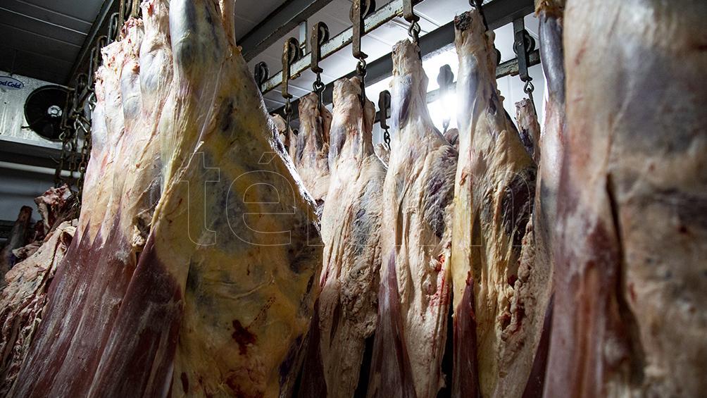 Tras la efectividad en la medida, extienden hasta octubre las restricciones para exportar carne