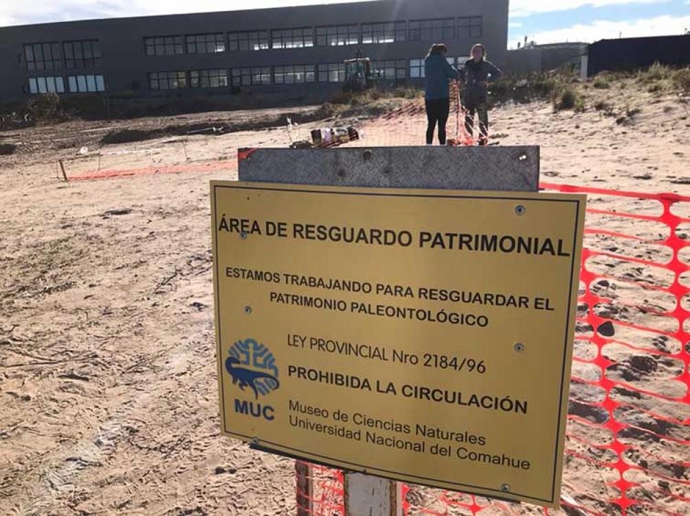 """fueron rescatados en un área protegida de la universidad por ser considerado un """"sitio único"""" en el mundo por la riqueza paleontológica que contiene."""