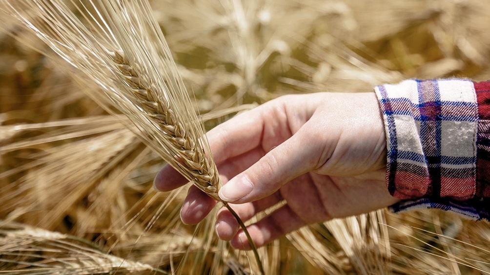 """Otero asegura que """"los sistemas agroalimentarios cada vez tienen que ser mas sostenibles, prestar más atención a los consumidores y a la inclusión de los pequeños agricultores""""."""