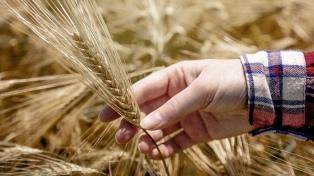 """""""La región está llamada a ser garante de la seguridad alimentaria del planeta"""""""