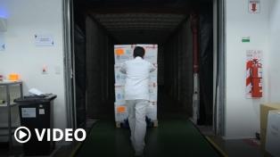 Paso a paso: el operativo que en pocas horas lleva las vacunas de Ezeiza a las provincias