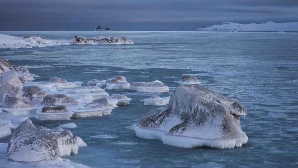 Foto: Instituto Antártico Argentino.