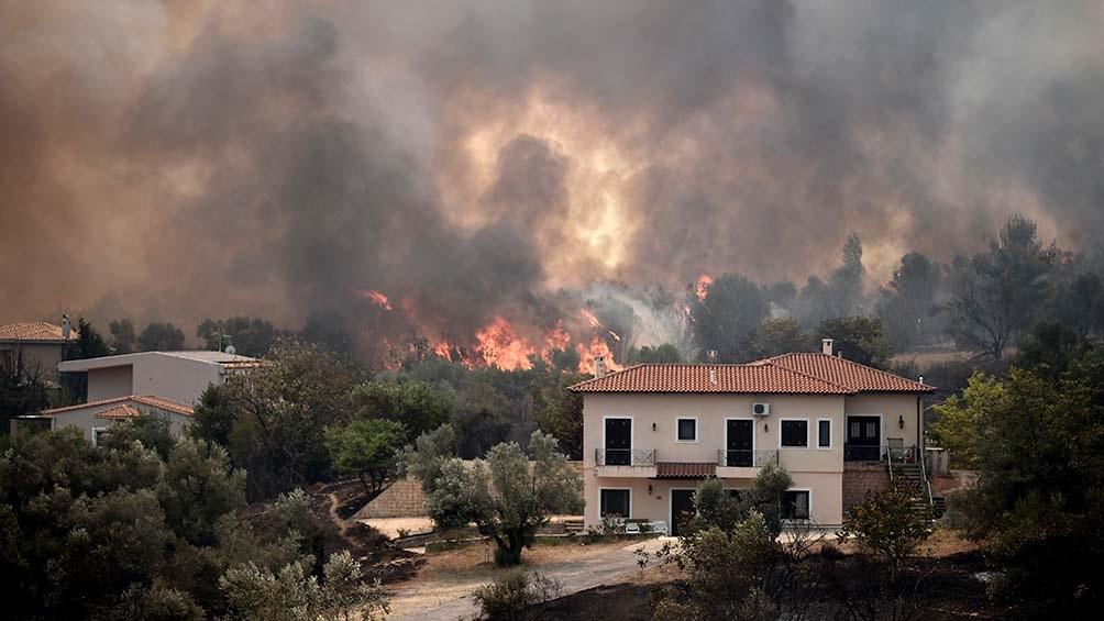 Además de la destrucción de viviendas y de bosques, los incendios provocaron desequilibrios en la economía de Eubea.