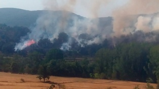 España registra los primeros incendios en plena ola de calor en la península