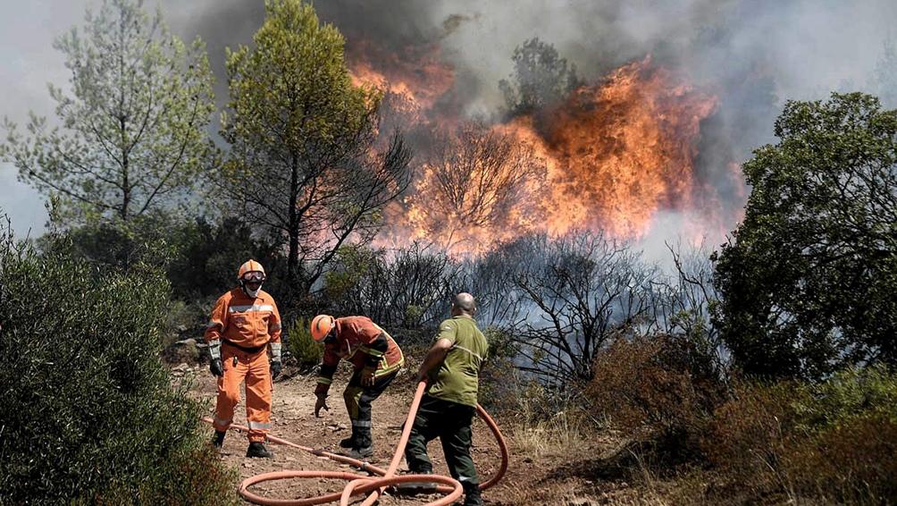El incendio quemó hasta ahora 5.000 hectáreas de bosque y matorral