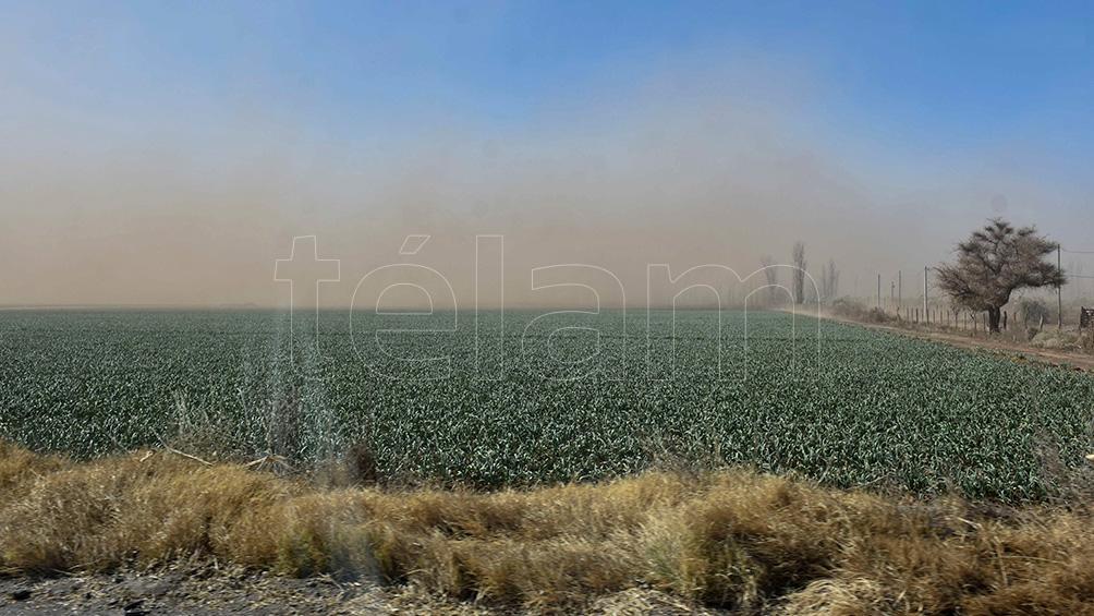 El viento Zonda causó incendios Foto: Ruben Paratore