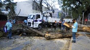 Suspenden las clases en Mendoza por fuertes ráfagas de viento Zonda