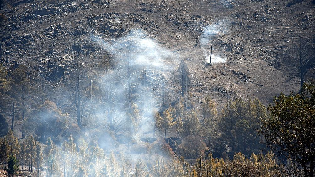 El incendio arrasó con más de 50 cabañas del complejo conocido como Potrerillo Pueblo de Montaña. Foto: Gabriela Lescano.