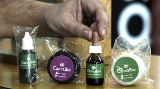Entusiasmo en las provincias por las oportunidades que arroja el cannabis medicinal