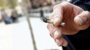 """Denuncian que Vidal """"estigmatiza a sector de la sociedad"""" por sus dichos sobre el cannabis"""