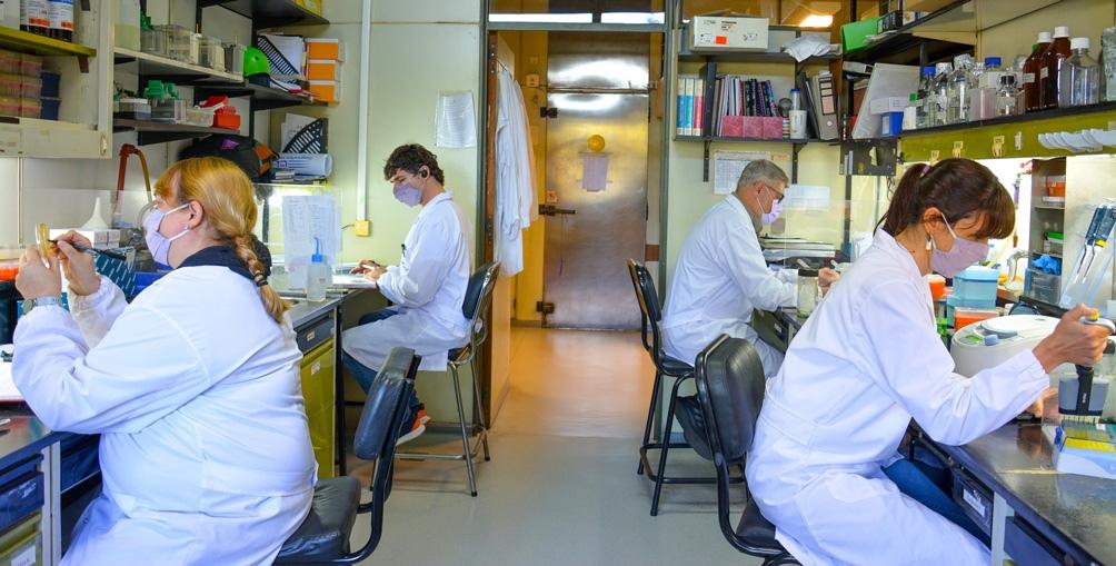 Investigadores del Conicet en el Instituto Leloir, junto a la biotecnológica Vaxinz, trabajano en una vacuna monodosis. (Foto: Instituto Leloir).