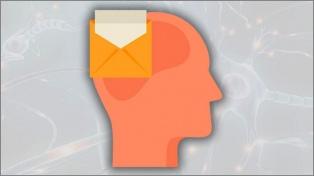 Neurobiopolítica: Las emociones no nacen, se hacen
