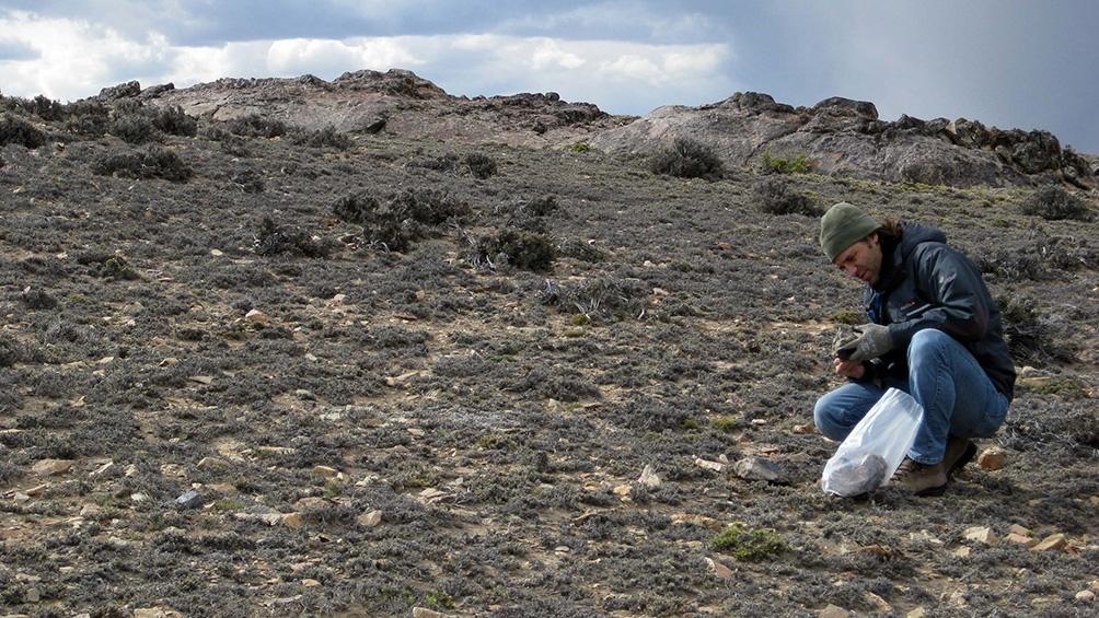 En el Macizo del Deseado, se hallaron 23 localidades de depósitos geotermales fósiles.