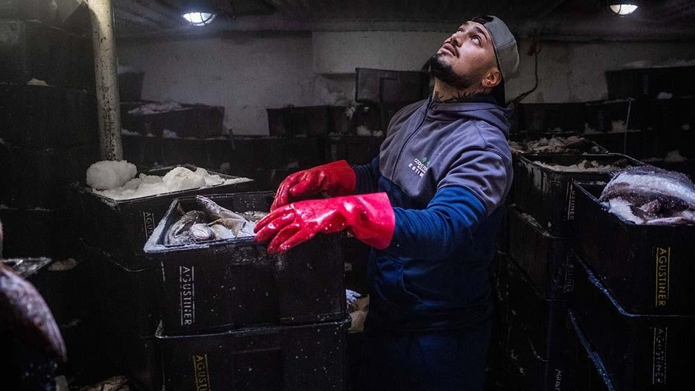 Sumando las ventas de pescados y mariscos sin elaborar y los elaborados, el resultado arroja un total de US$ 1.043 millones exportados entre enero y julio de 2021.Foto: Diego Izquierdo.