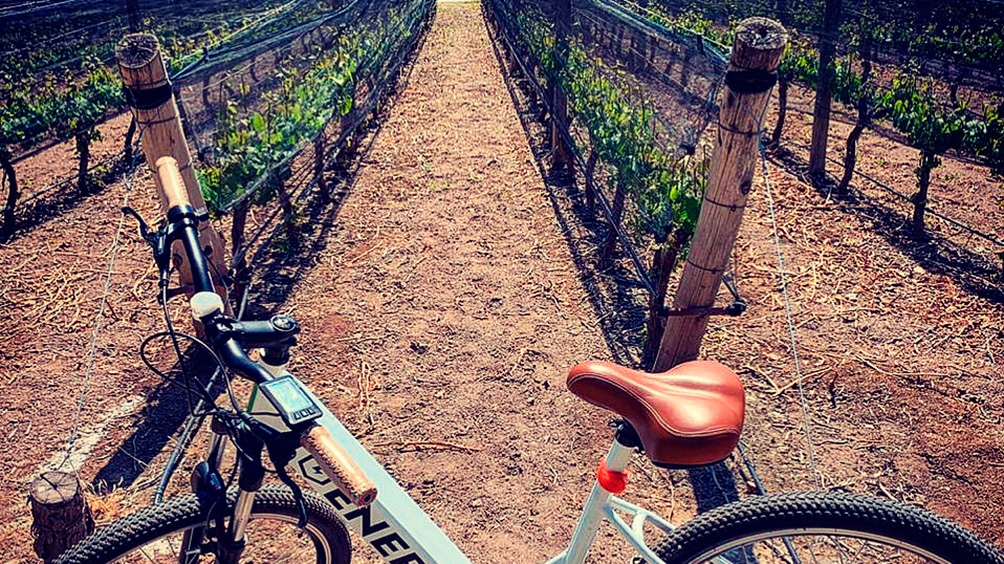 La bicicleta es el transporte preferido de los vecinos en San Rafael.